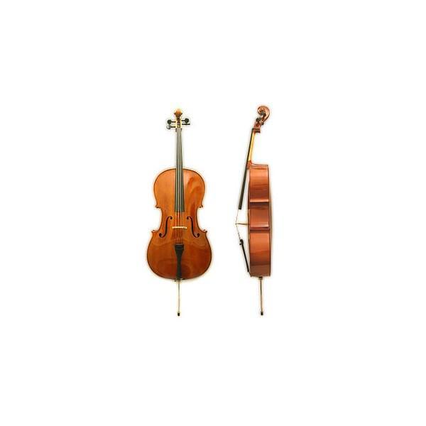 Violoncel HORA 4/4