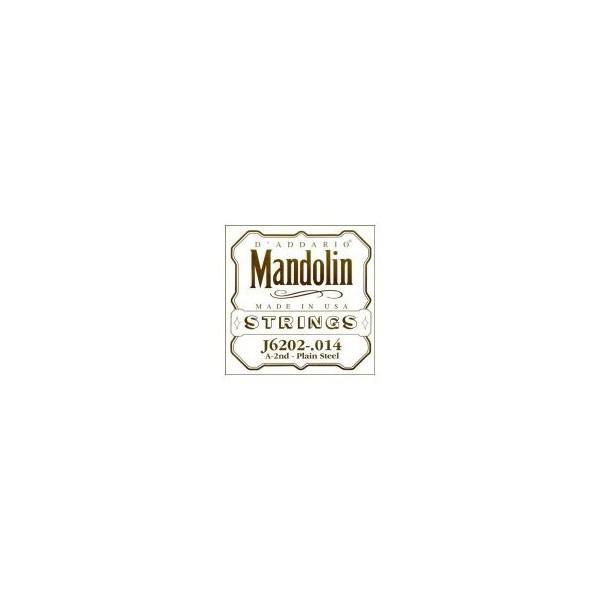 Coarda Mandolina Daddario J6202 coarda La